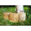 Birch bark box pd22